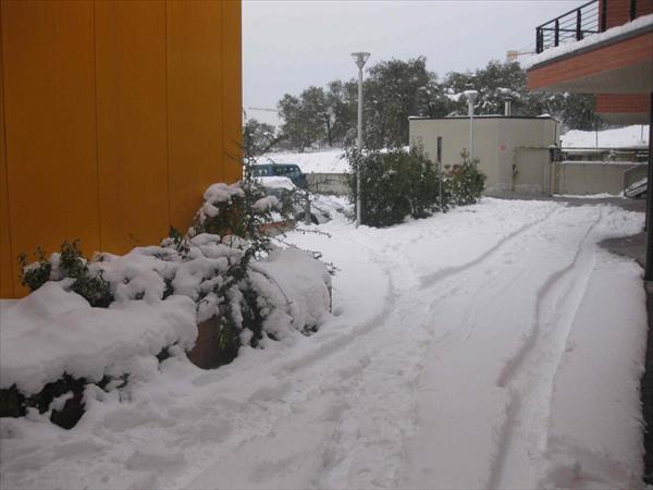 S...PalaCostone con la neve